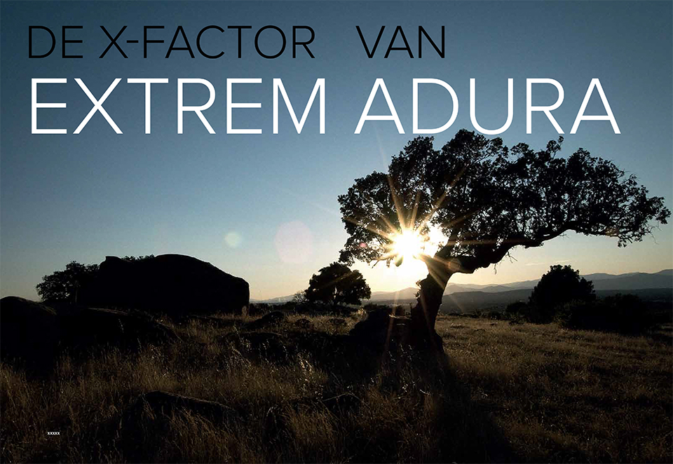 Publicatie Extremadura publication