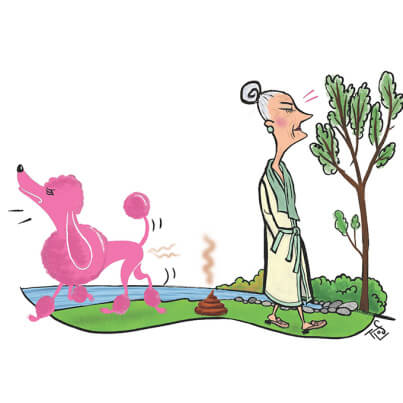 het verzet van de frêle dame in Cook Pond