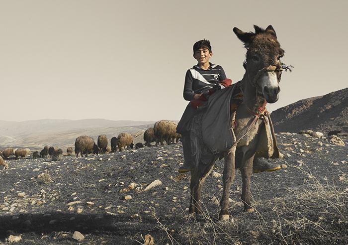 Geitenhoeder in bergen Koerdistan Irak