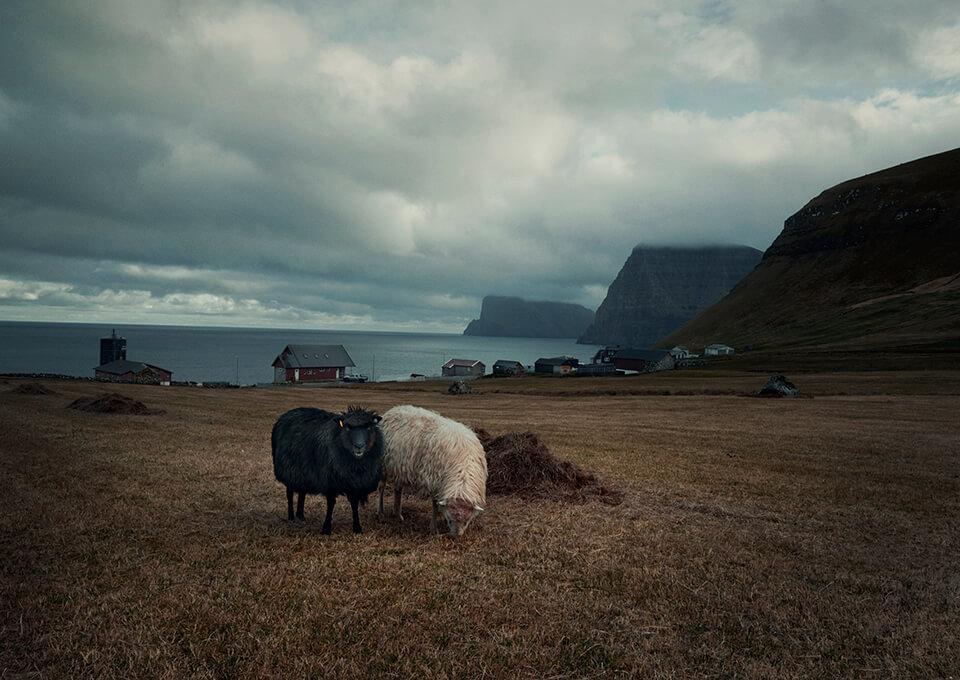 Trøllanes Faeröereilanden | Faroe islands Kalsoy