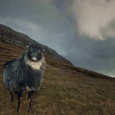 De Faeröer eilanden, 9 weetjes   Faroe Islands, 9 things to know before you go