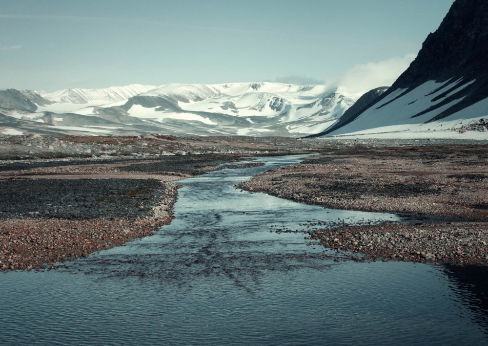 Walrusbaai Groenland