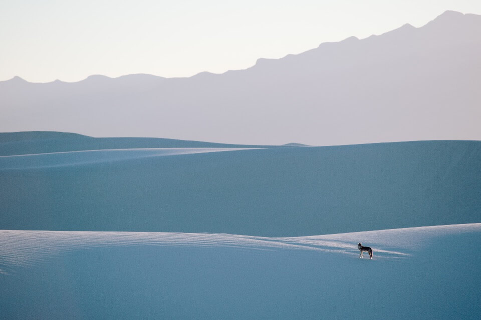 White-sands-Mexico-jeremiah-curtis-